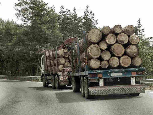 https://angelsxpress.com/wp-content/uploads/2017/08/inner_big_trucks_01-640x480.jpg
